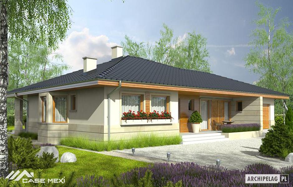 Case moderne case de vanzare structura metalica proiecte for Case moderne