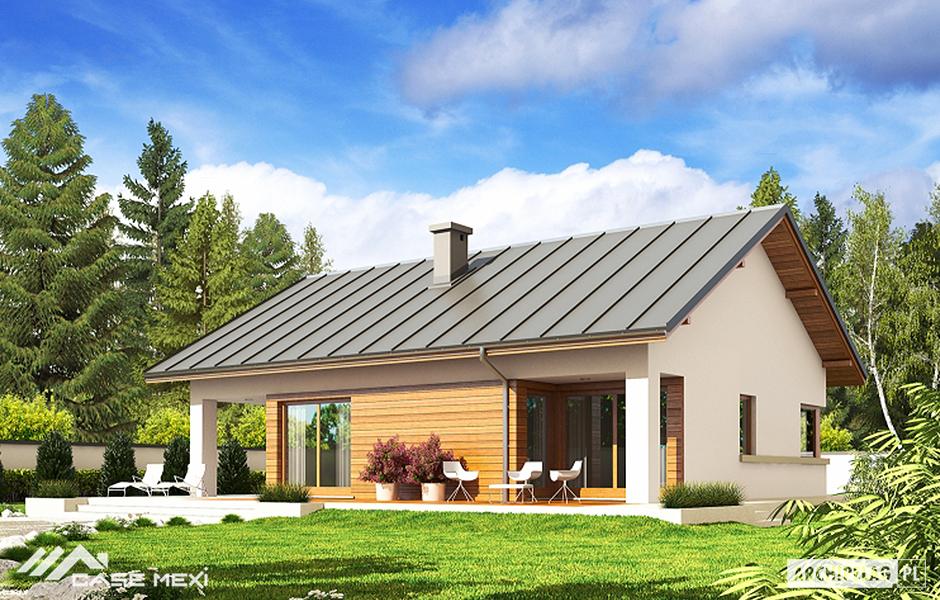 Proiecte de case case de vanzare structura metalica for Case de vis mici